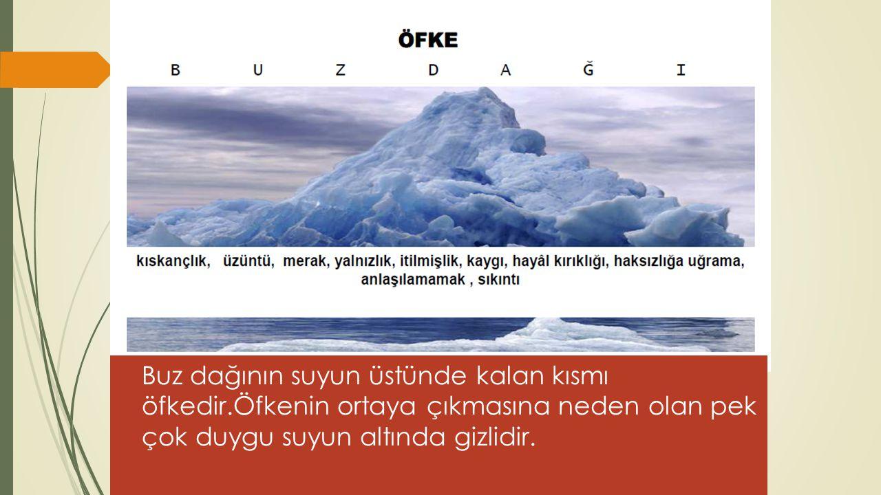 ÖMER MURAT PAMUK7 Buz dağının suyun üstünde kalan kısmı öfkedir.Öfkenin ortaya çıkmasına neden olan pek çok duygu suyun altında gizlidir.