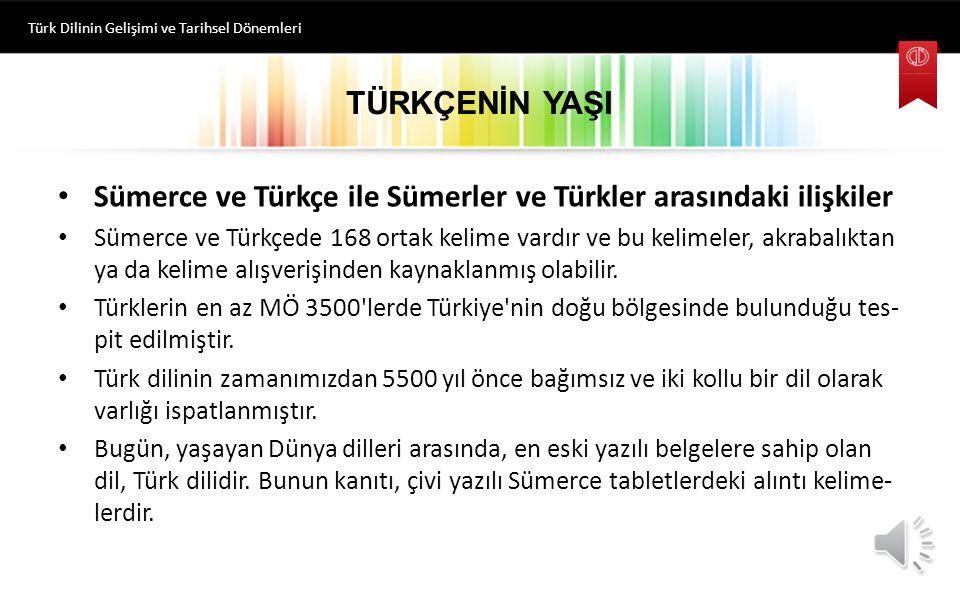 TÜRKÇENİN YAŞI Sümerce ve Türkçe ile Sümerler ve Türkler arasındaki ilişkiler Sümerce ve Türkçede 168 ortak kelime vardır ve bu kelimeler, akrabalıktan ya da kelime alışverişinden kaynaklanmış olabilir.