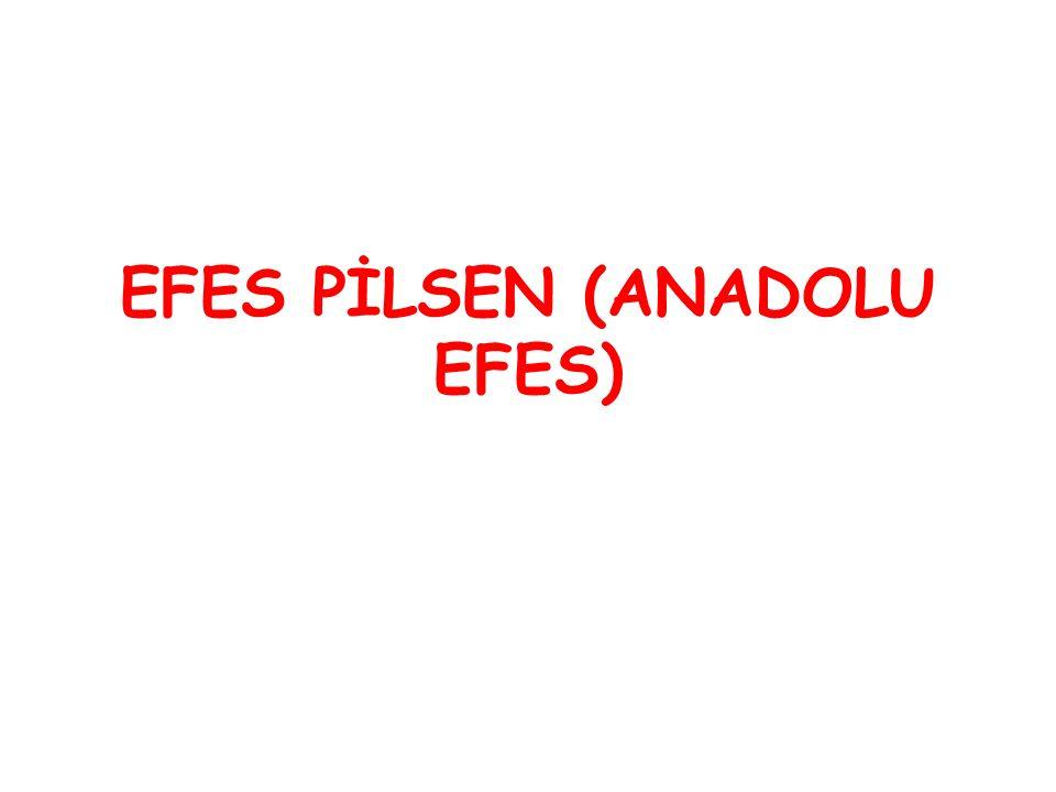 EFES PİLSEN (ANADOLU EFES)