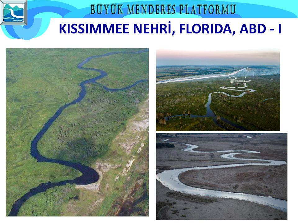 KISSIMMEE NEHRİ, FLORIDA, ABD - I