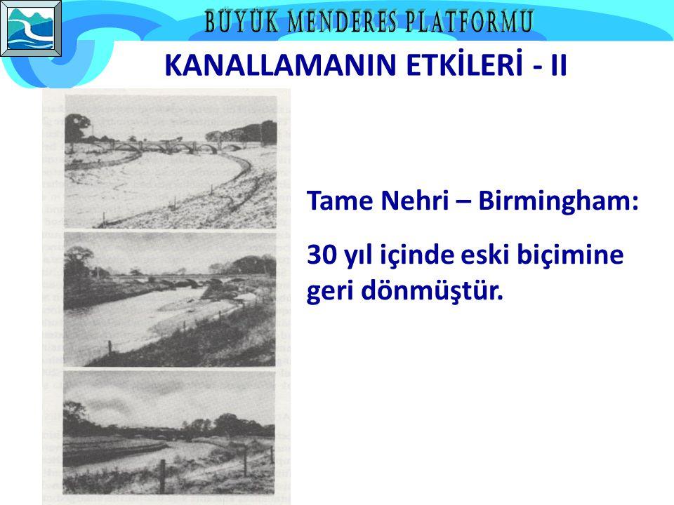 KANALLAMANIN ETKİLERİ - II Tame Nehri – Birmingham: 30 yıl içinde eski biçimine geri dönmüştür.
