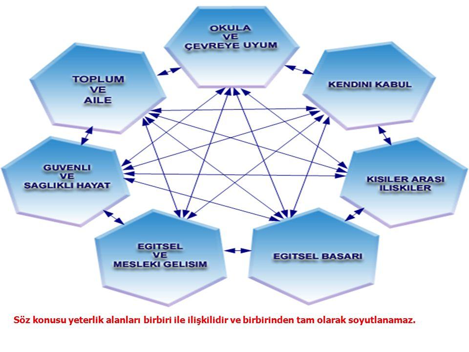 Söz konusu yeterlik alanları birbiri ile ilişkilidir ve birbirinden tam olarak soyutlanamaz.