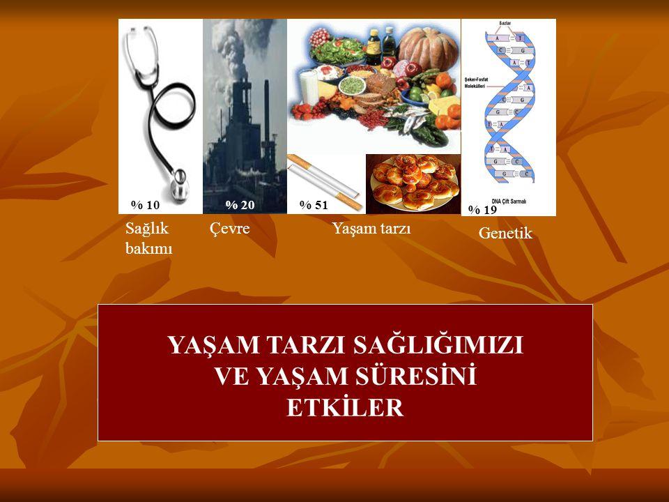 YAŞAM TARZI SAĞLIMIZI VE YAŞAM SÜRESİNİ ETKİLER % 10% 20% 51 % 19 Sağlık bakımı ÇevreYaşam tarzı Genetik YAŞAM TARZI SAĞLIĞIMIZI VE YAŞAM SÜRESİNİ ETK