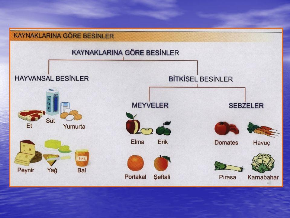 Beslenme piramidi 5 ana besin grubunu içerir.