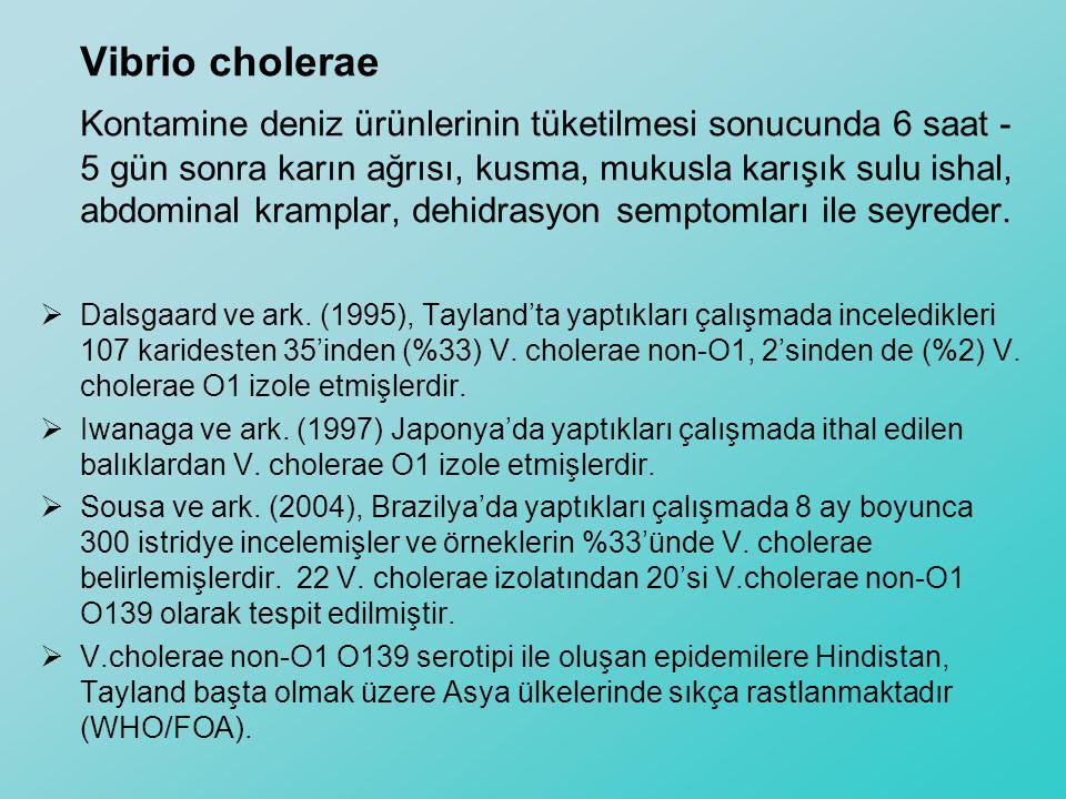 Vibrio cholerae Kontamine deniz ürünlerinin tüketilmesi sonucunda 6 saat - 5 gün sonra karın ağrısı, kusma, mukusla karışık sulu ishal, abdominal kram