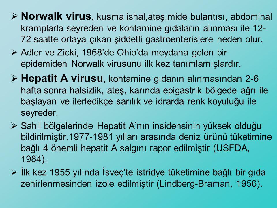  Norwalk virus, kusma ishal,ateş,mide bulantısı, abdominal kramplarla seyreden ve kontamine gıdaların alınması ile 12- 72 saatte ortaya çıkan şiddetl