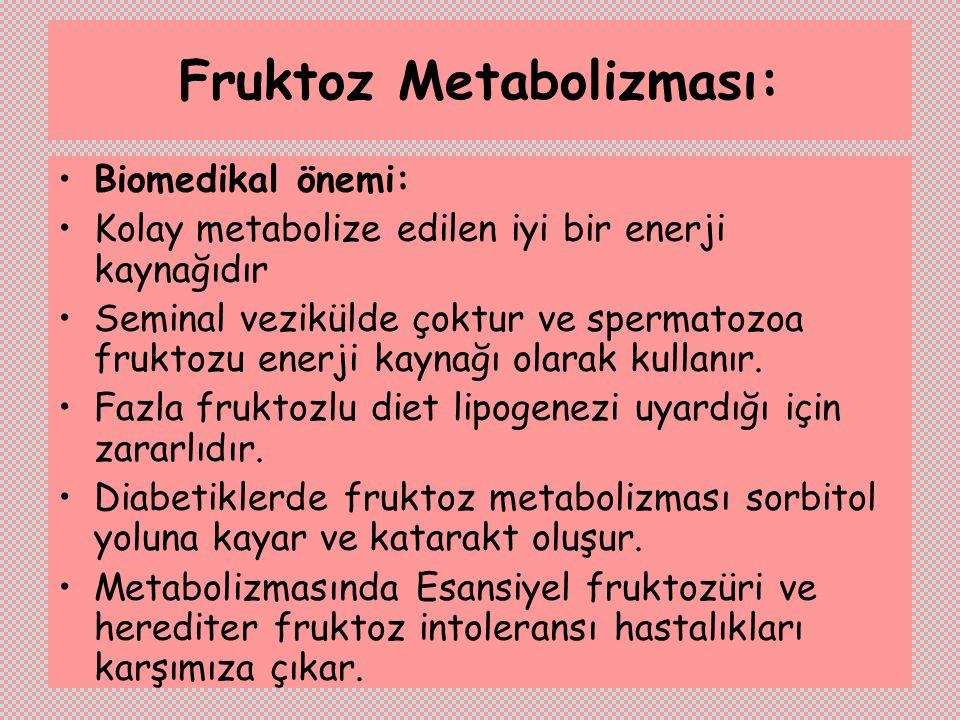 Fruktoz Metabolizması: Biomedikal önemi: Kolay metabolize edilen iyi bir enerji kaynağıdır Seminal vezikülde çoktur ve spermatozoa fruktozu enerji kay