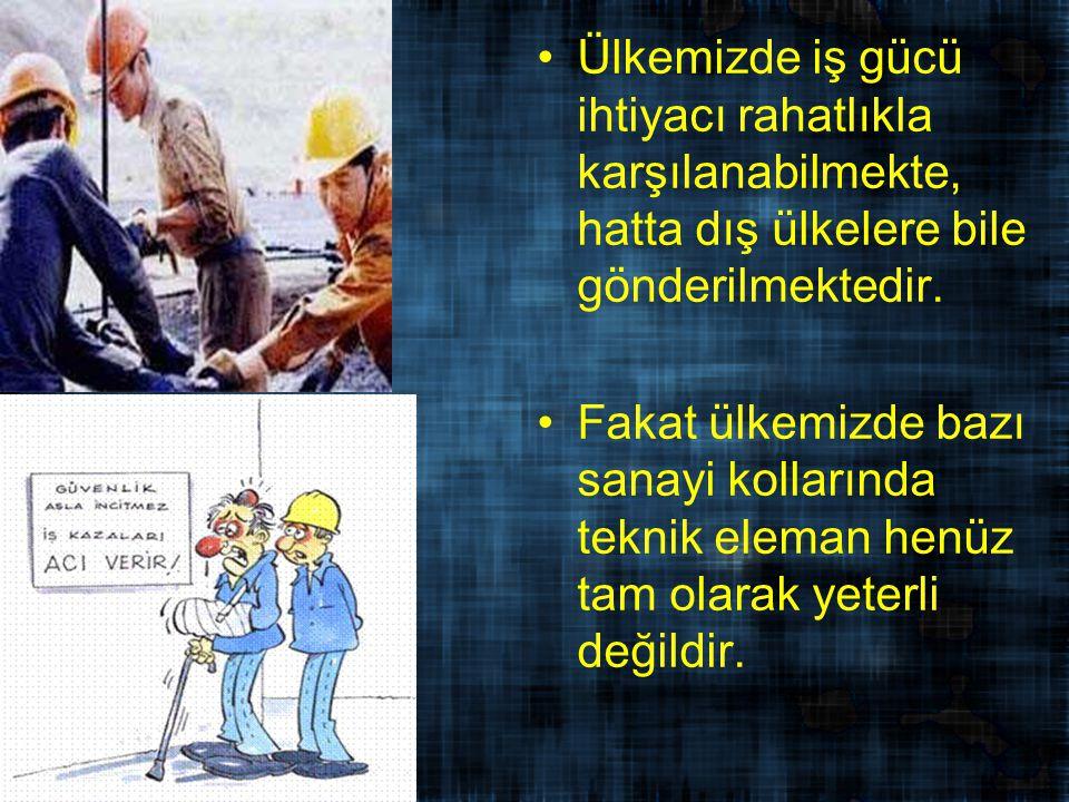 Ülkemizde iş gücü ihtiyacı rahatlıkla karşılanabilmekte, hatta dış ülkelere bile gönderilmektedir.