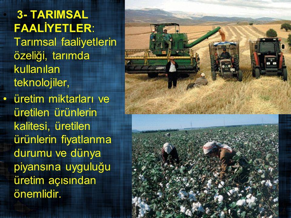 3- TARIMSAL FAALİYETLER: Tarımsal faaliyetlerin özeliği, tarımda kullanılan teknolojiler, üretim miktarları ve üretilen ürünlerin kalitesi, üretilen ürünlerin fiyatlanma durumu ve dünya piyansına uyguluğu üretim açısından önemlidir.