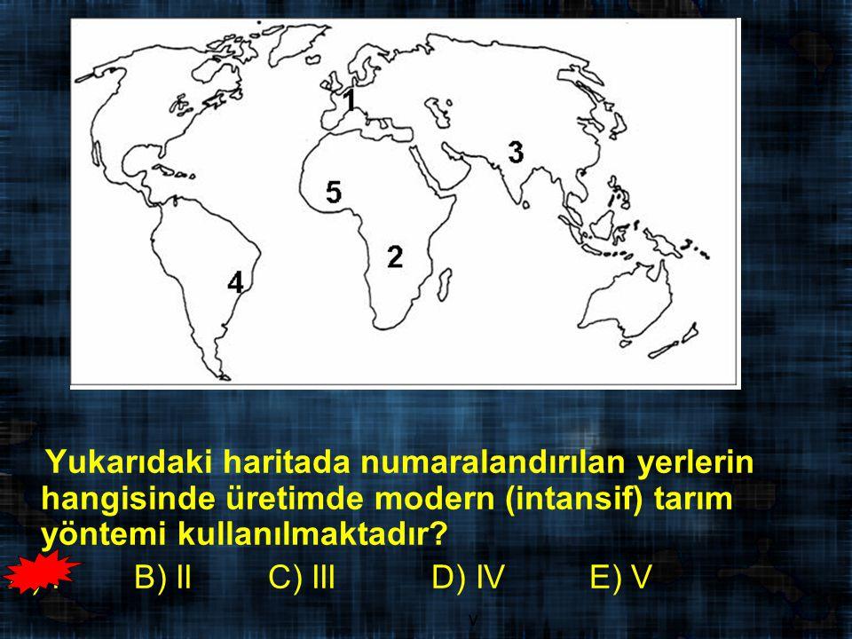 Yukarıdaki haritada numaralandırılan yerlerin hangisinde üretimde modern (intansif) tarım yöntemi kullanılmaktadır.