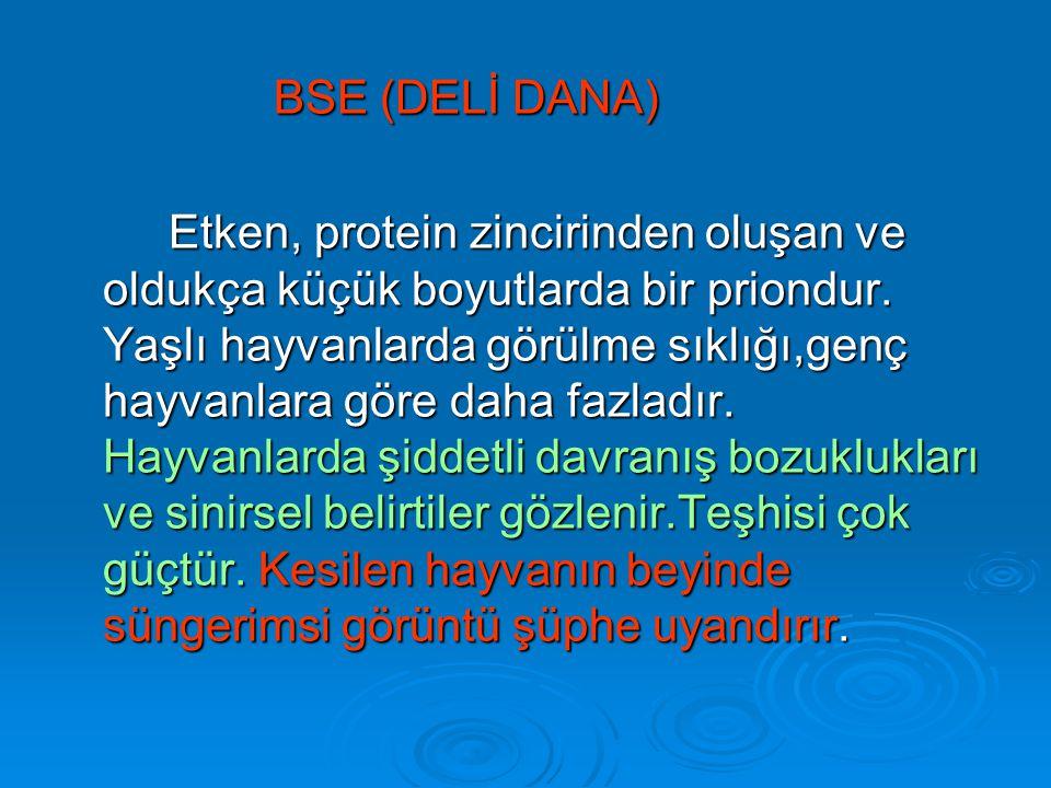 BSE (DELİ DANA) Etken, protein zincirinden oluşan ve oldukça küçük boyutlarda bir priondur.