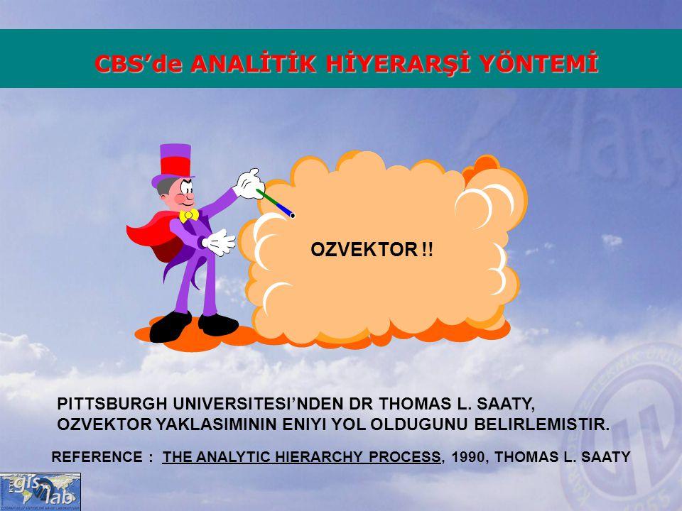 OZVEKTOR !! PITTSBURGH UNIVERSITESI'NDEN DR THOMAS L. SAATY, OZVEKTOR YAKLASIMININ ENIYI YOL OLDUGUNU BELIRLEMISTIR. IKILI KARSILASTIRMALARDAN OLCUT A