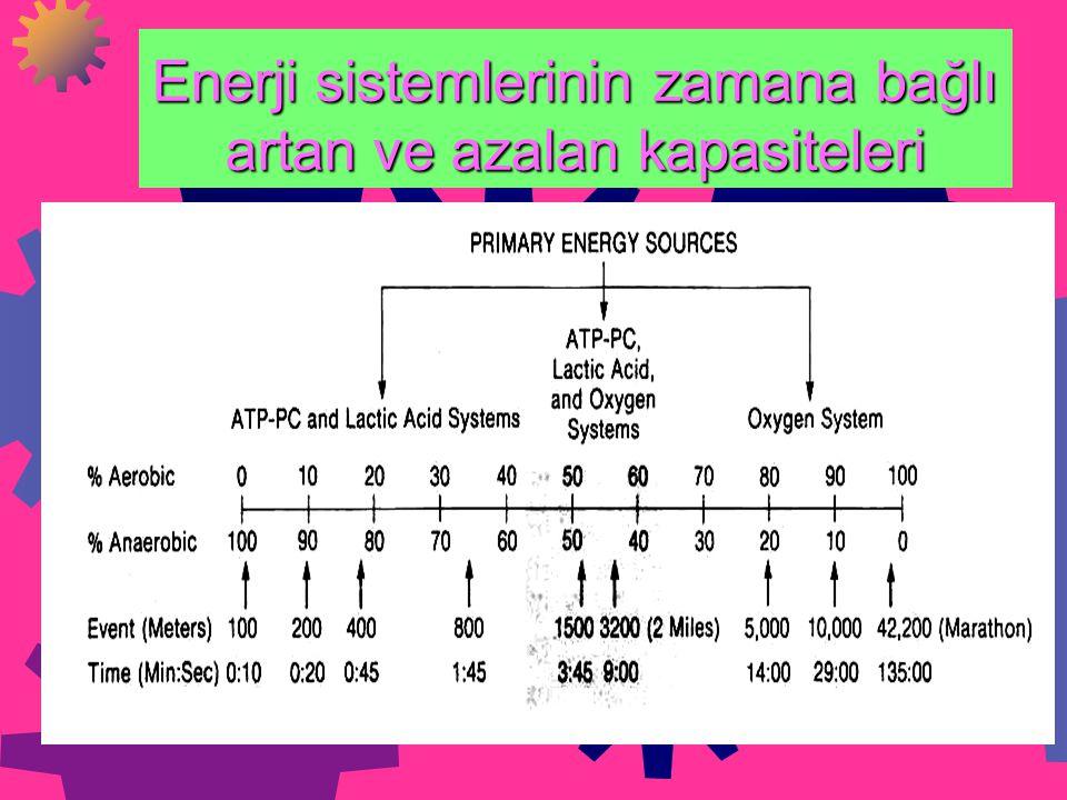 Enerji sistemlerinin zamana bağlı artan ve azalan kapasiteleri