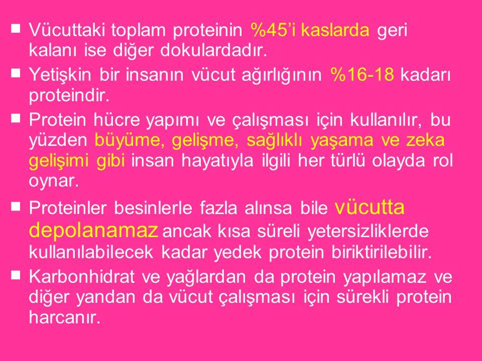 ■ Vücuttaki toplam proteinin %45'i kaslarda geri kalanı ise diğer dokulardadır. ■ Yetişkin bir insanın vücut ağırlığının %16-18 kadarı proteindir. ■ P