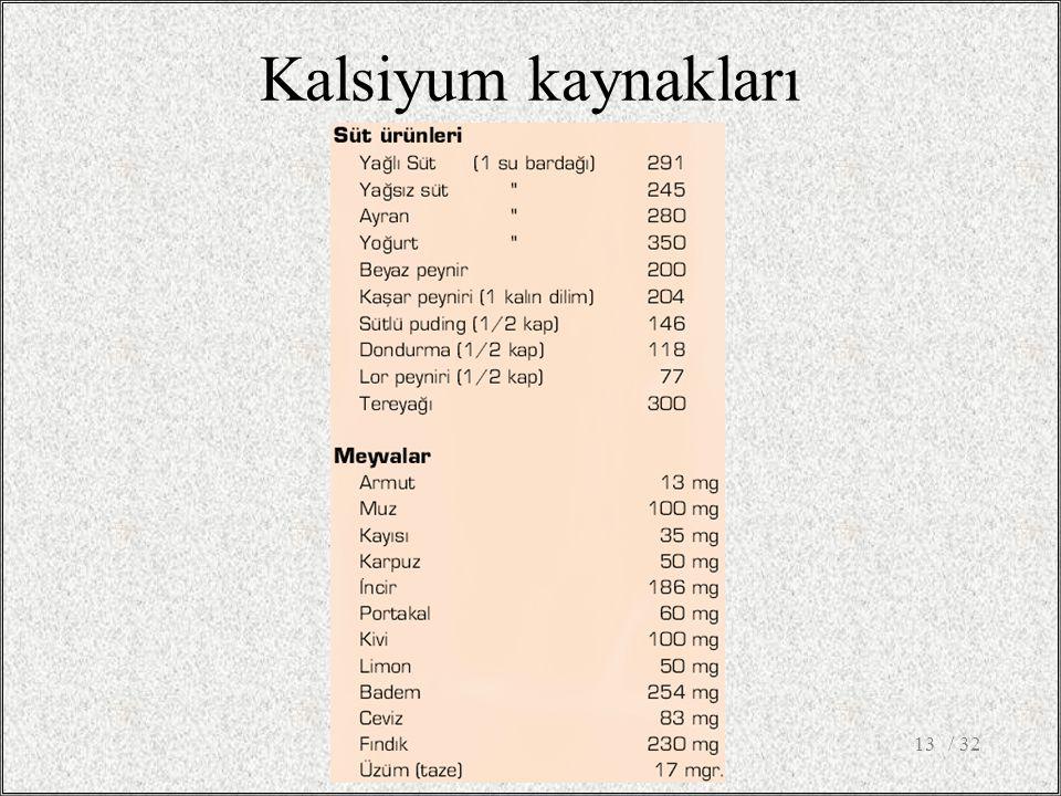 / 3213 Kalsiyum kaynakları