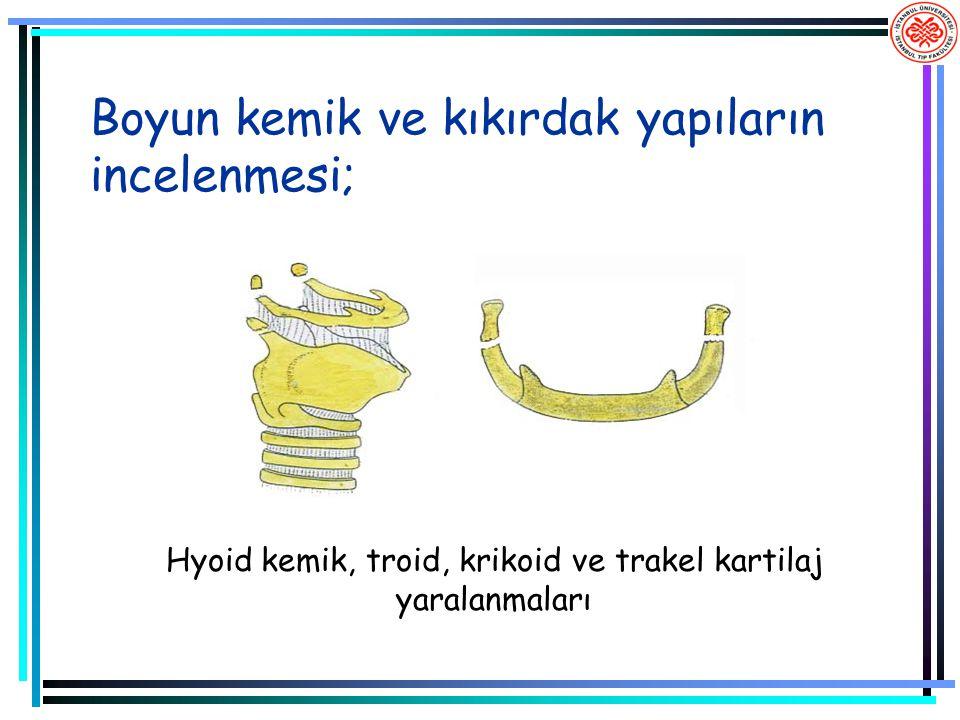 Boyun kemik ve kıkırdak yapıların incelenmesi; Hyoid kemik, troid, krikoid ve trakel kartilaj yaralanmaları
