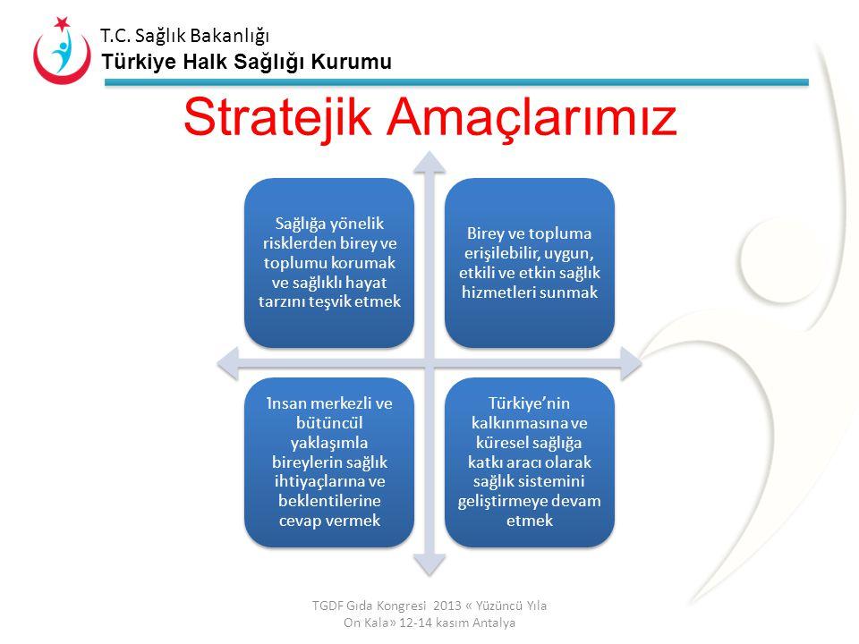 T.C. Sağlık Bakanlığı Türkiye Halk Sağlığı Kurumu T.C. Sağlık Bakanlığı Türkiye Halk Sağlığı Kurumu Sağlık Bakanlığı VİZYONU S.B. Stratejik Plan 2013