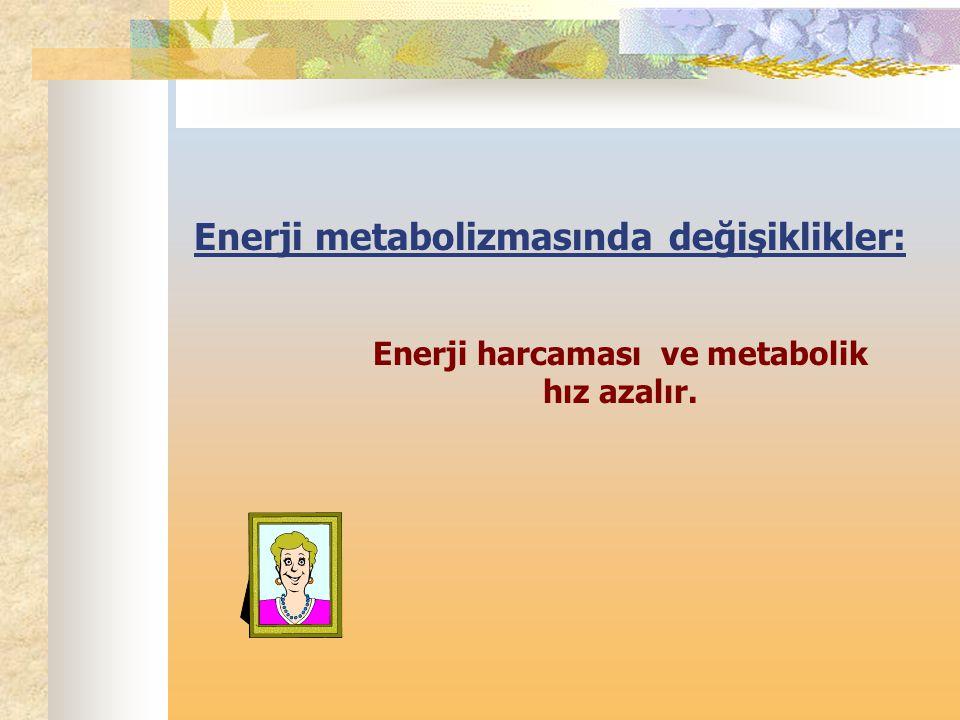 Enerji metabolizmasında değişiklikler: Enerji harcaması ve metabolik hız azalır.