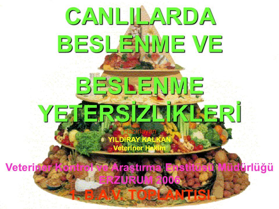 12 Beslenmenin bölümleri Sindirim, Absorbsiyon, Sirkülasyon Respirasyon, Metabolizma, Boşaltım,