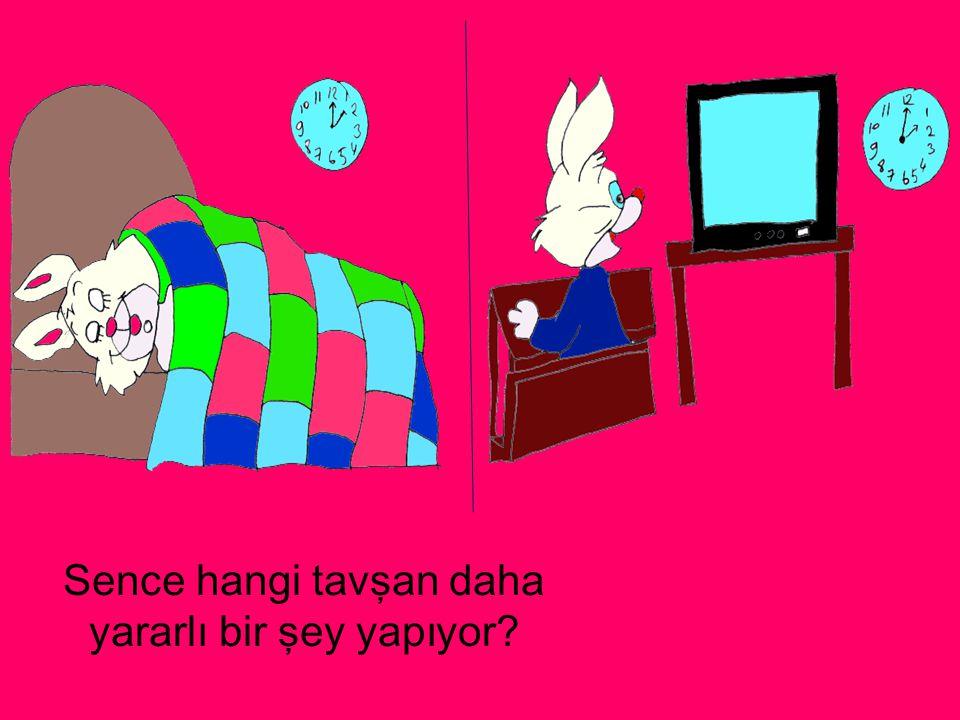 Sence hangi tavşan daha yararlı bir şey yapıyor?