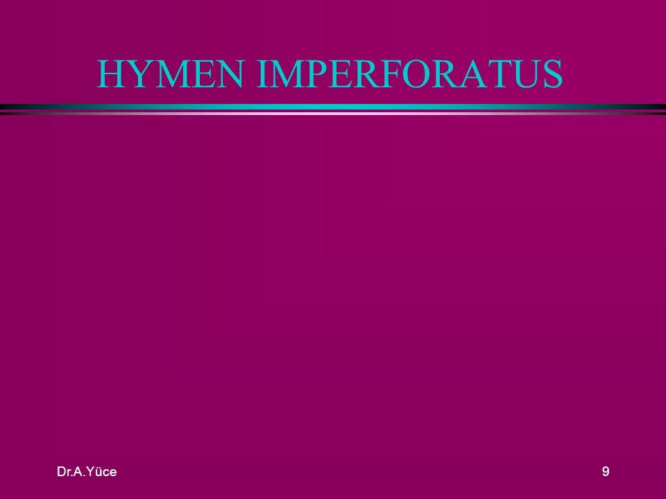 Dr.A.Yüce8 PAROUS INTROITUS