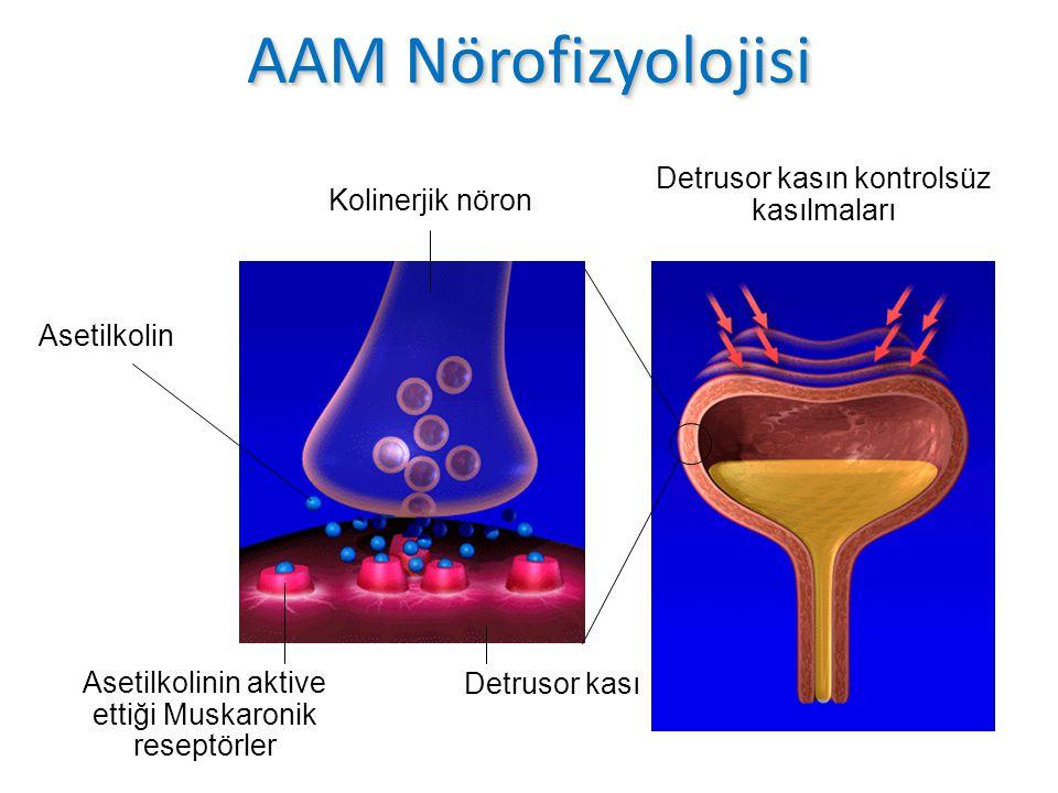 Asetilkolin Reseptörleri 1.Nikotinik 2.Muskarinik Muskarinik Reseptör Alttipleri M 1 :Serebral korteks, hipokampus, salgı bezleri, sempatik ganglia M 2 :Hindbrain, kalp, düz kas M 3 :Serebral korteks, salgı bezleri (tükrük),düz kas M 4 :Basal forebrain, striatum M 5 :Substantia nigra Chapple CR.