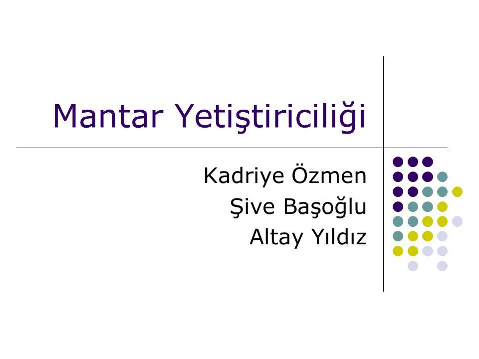 Mantar Yetiştiriciliği Kadriye Özmen Şive Başoğlu Altay Yıldız