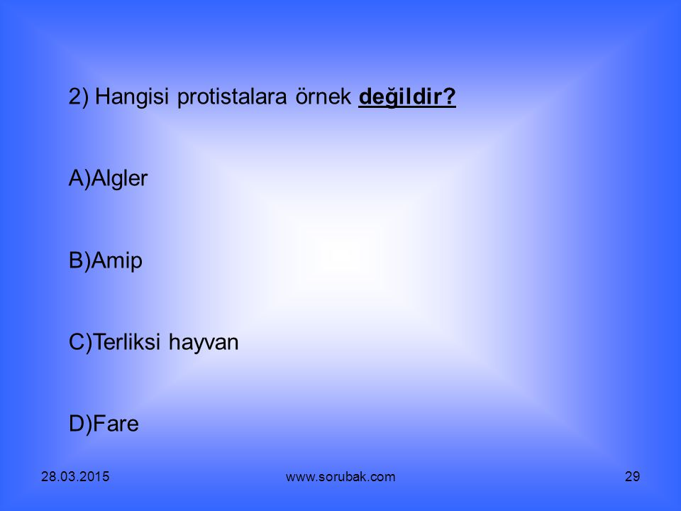 28.03.2015www.sorubak.com29 2) Hangisi protistalara örnek değildir? A)Algler B)Amip C)Terliksi hayvan D)Fare