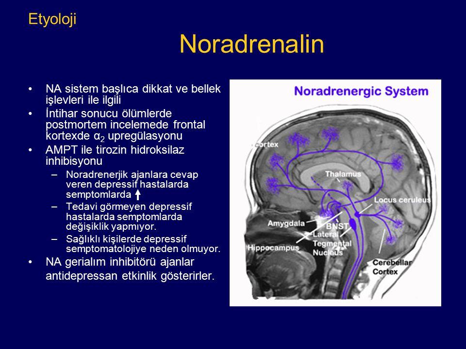Etyoloji Noradrenalin NA sistem başlıca dikkat ve bellek işlevleri ile ilgili İntihar sonucu ölümlerde postmortem incelemede frontal kortexde α 2 upre
