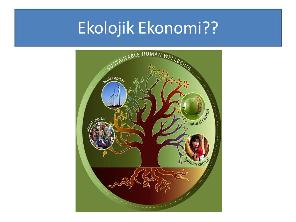 Ekolojik Ekonomi??