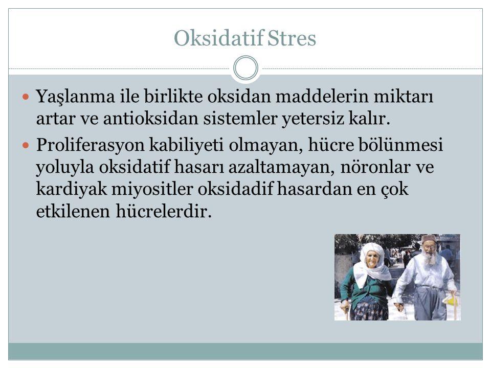 Oksidatif Stres Yaşlanma ile birlikte oksidan maddelerin miktarı artar ve antioksidan sistemler yetersiz kalır. Proliferasyon kabiliyeti olmayan, hücr