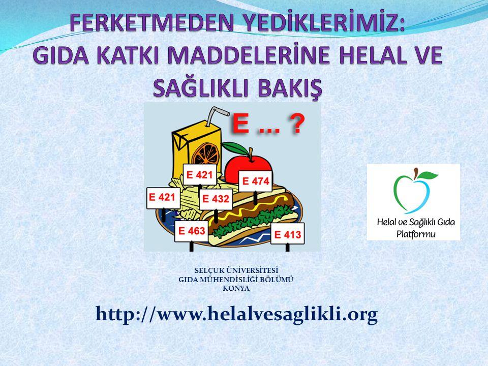 Jelatinin Bileşimi Jelatin; – İngredient'dir, – E-Kodlu bir gıda katkı maddesi değildir.
