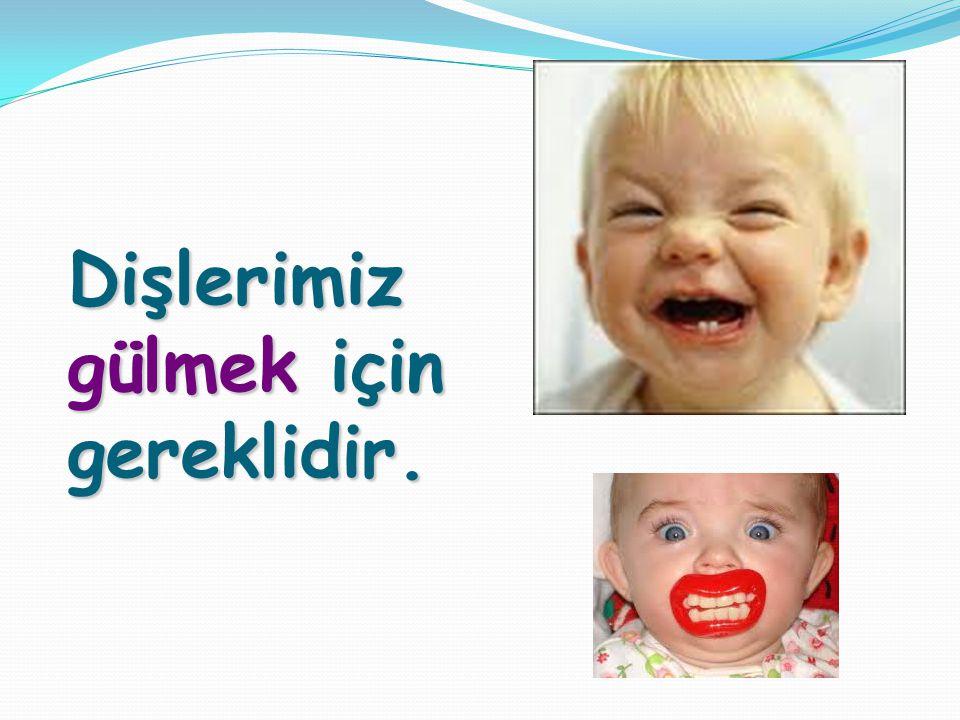 Dişlerimiz gülmek için gereklidir.