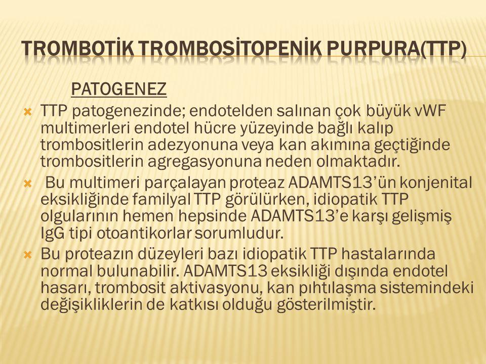 PATOGENEZ  TTP patogenezinde; endotelden salınan çok büyük vWF multimerleri endotel hücre yüzeyinde bağlı kalıp trombositlerin adezyonuna veya kan ak
