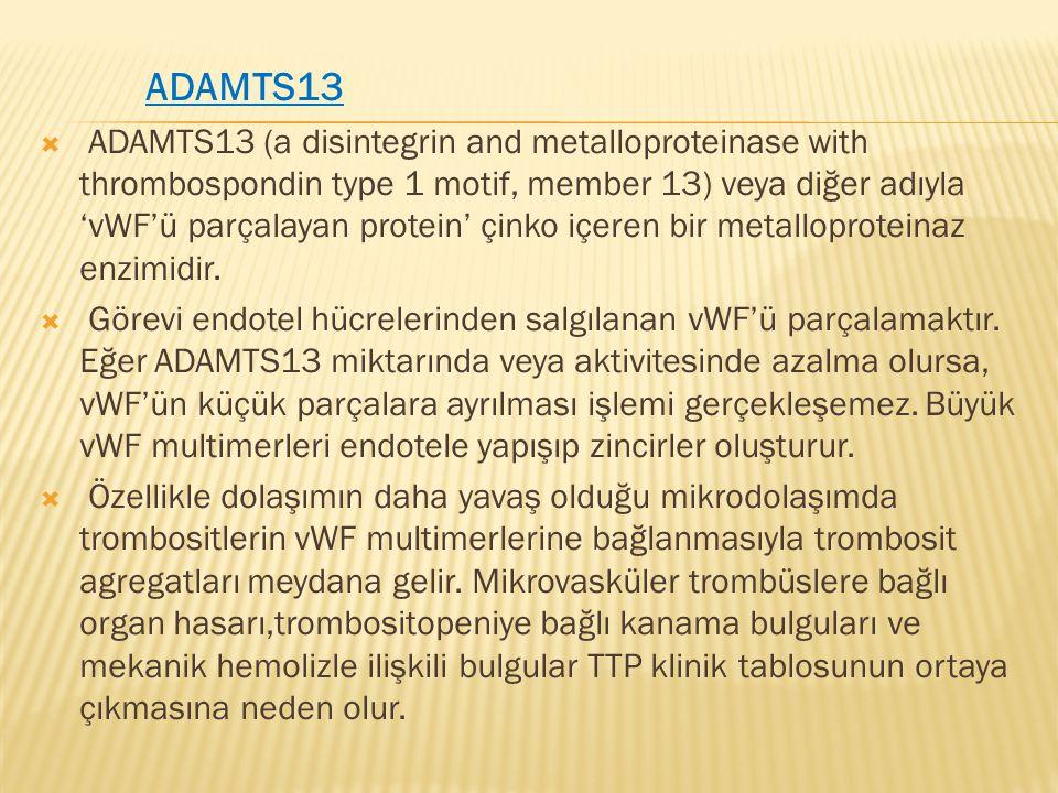 ADAMTS13  ADAMTS13 (a disintegrin and metalloproteinase with thrombospondin type 1 motif, member 13) veya diğer adıyla 'vWF'ü parçalayan protein' çin