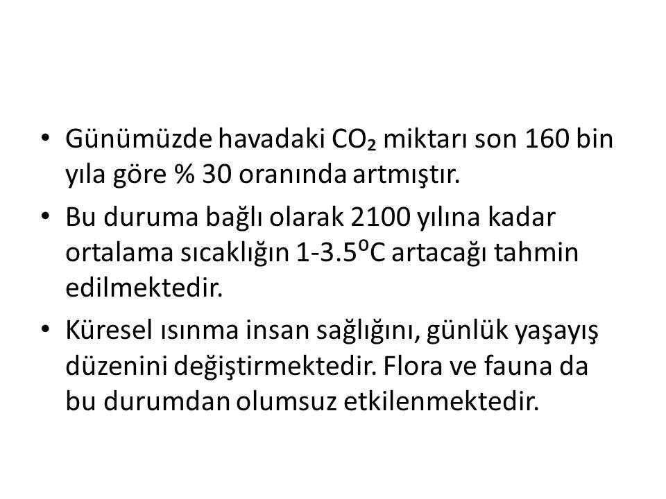 Günümüzde havadaki CO₂ miktarı son 160 bin yıla göre % 30 oranında artmıştır. Bu duruma bağlı olarak 2100 yılına kadar ortalama sıcaklığın 1-3.5⁰C art