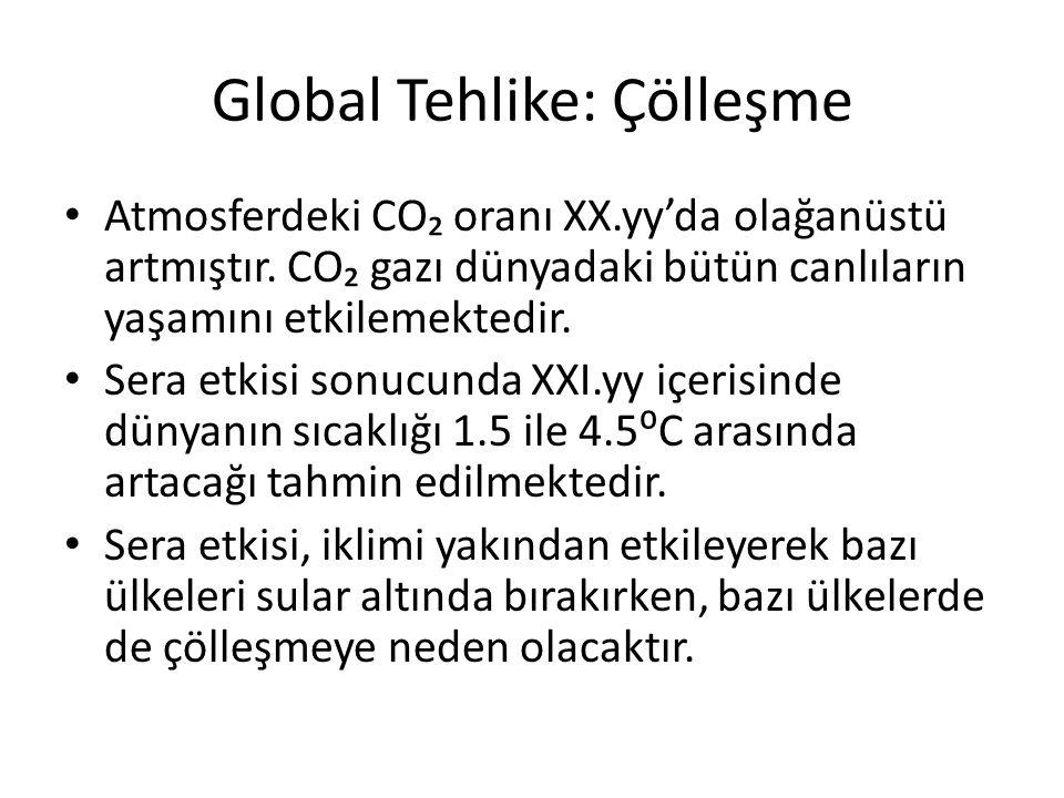 Global Tehlike: Çölleşme Atmosferdeki CO₂ oranı XX.yy'da olağanüstü artmıştır. CO₂ gazı dünyadaki bütün canlıların yaşamını etkilemektedir. Sera etkis