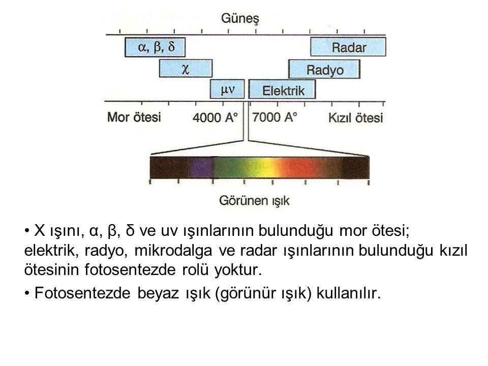 X ışını, α, β, δ ve uv ışınlarının bulunduğu mor ötesi; elektrik, radyo, mikrodalga ve radar ışınlarının bulunduğu kızıl ötesinin fotosentezde rolü yo