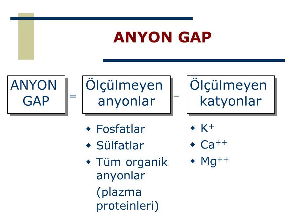 ANYON GAP  Fosfatlar  Sülfatlar  Tüm organik anyonlar (plazma proteinleri) ANYON GAP ANYON GAP Ölçülmeyen anyonlar Ölçülmeyen anyonlar Ölçülmeyen k