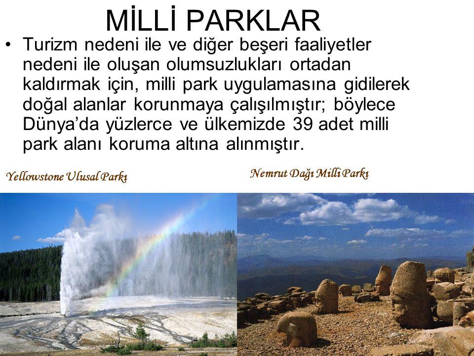MİLLİ PARKLAR Turizm nedeni ile ve diğer beşeri faaliyetler nedeni ile oluşan olumsuzlukları ortadan kaldırmak için, milli park uygulamasına gidilerek