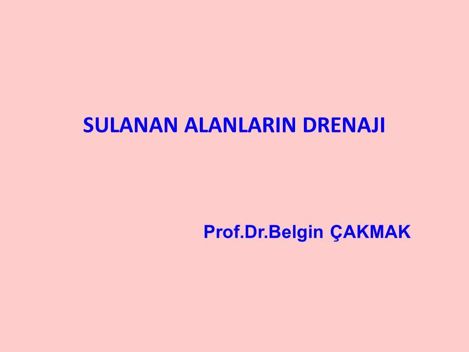 SULANAN ALANLARIN DRENAJI Prof.Dr.Belgin ÇAKMAK