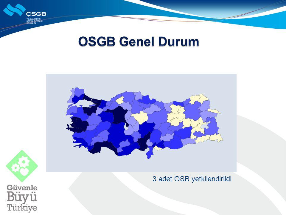 3 adet OSB yetkilendirildi