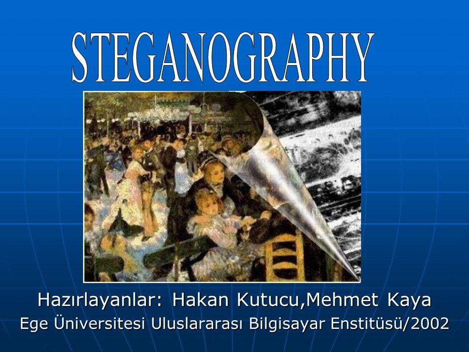 Hazırlayanlar: Hakan Kutucu,Mehmet Kaya Ege Üniversitesi Uluslararası Bilgisayar Enstitüsü/2002