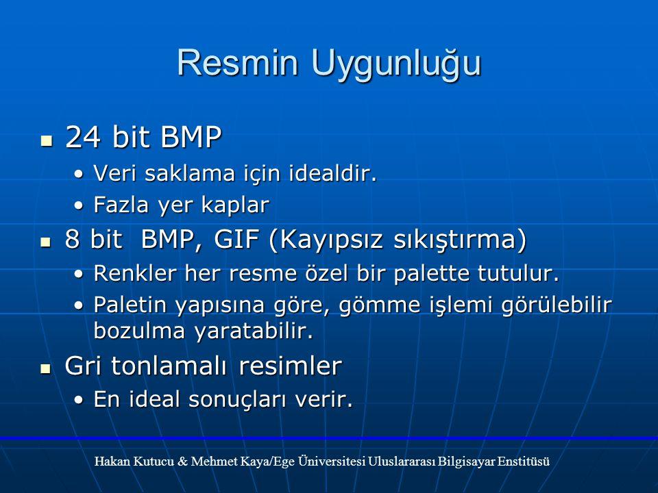 Resmin Uygunluğu 24 bit BMP 24 bit BMP Veri saklama için idealdir.Veri saklama için idealdir.