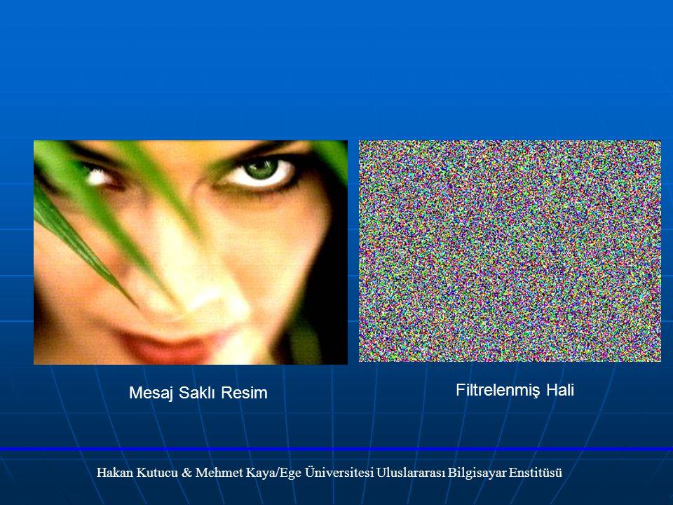 Hakan Kutucu & Mehmet Kaya/Ege Üniversitesi Uluslararası Bilgisayar Enstitüsü Mesaj Saklı Resim Filtrelenmiş Hali