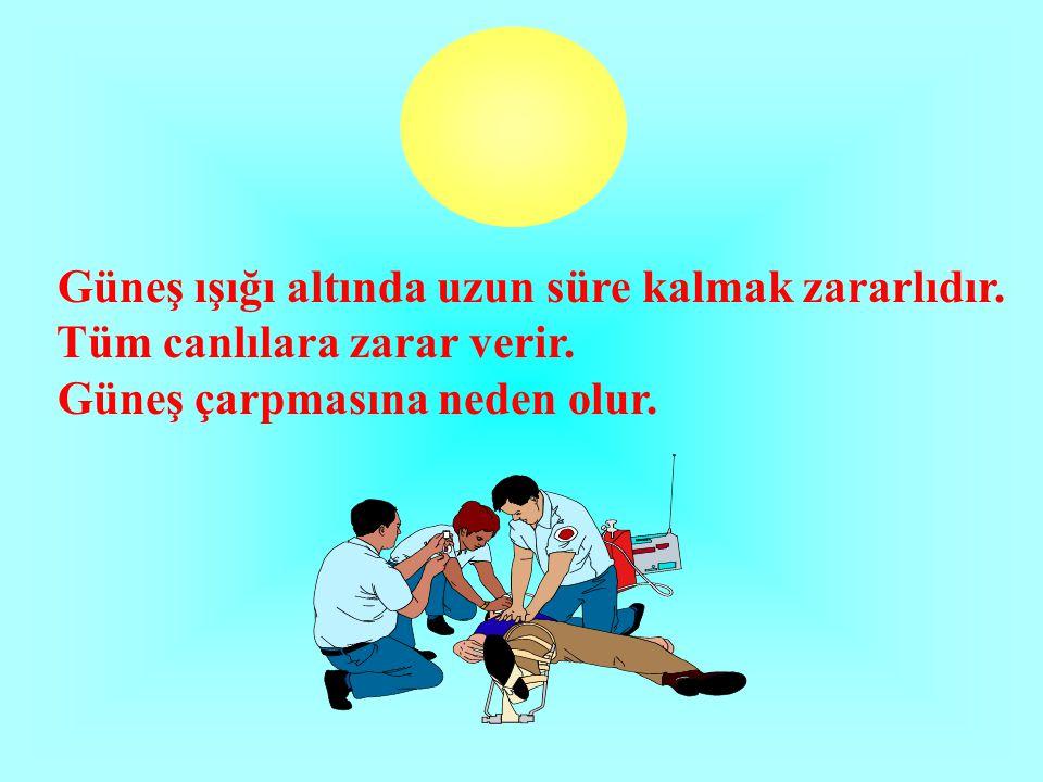 Güneş ışığı altında uzun süre kalmak zararlıdır. Tüm canlılara zarar verir. Güneş çarpmasına neden olur.