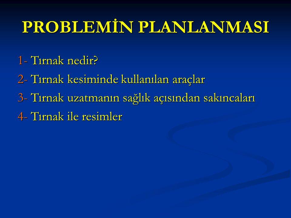 PROBLEMİN PLANLANMASI 1- Tırnak nedir.