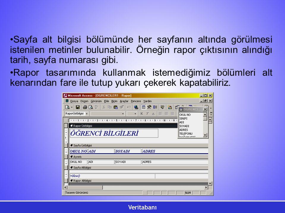 Veritabanı Sayfa alt bilgisi bölümünde her sayfanın altında görülmesi istenilen metinler bulunabilir. Örneğin rapor çıktısının alındığı tarih, sayfa n