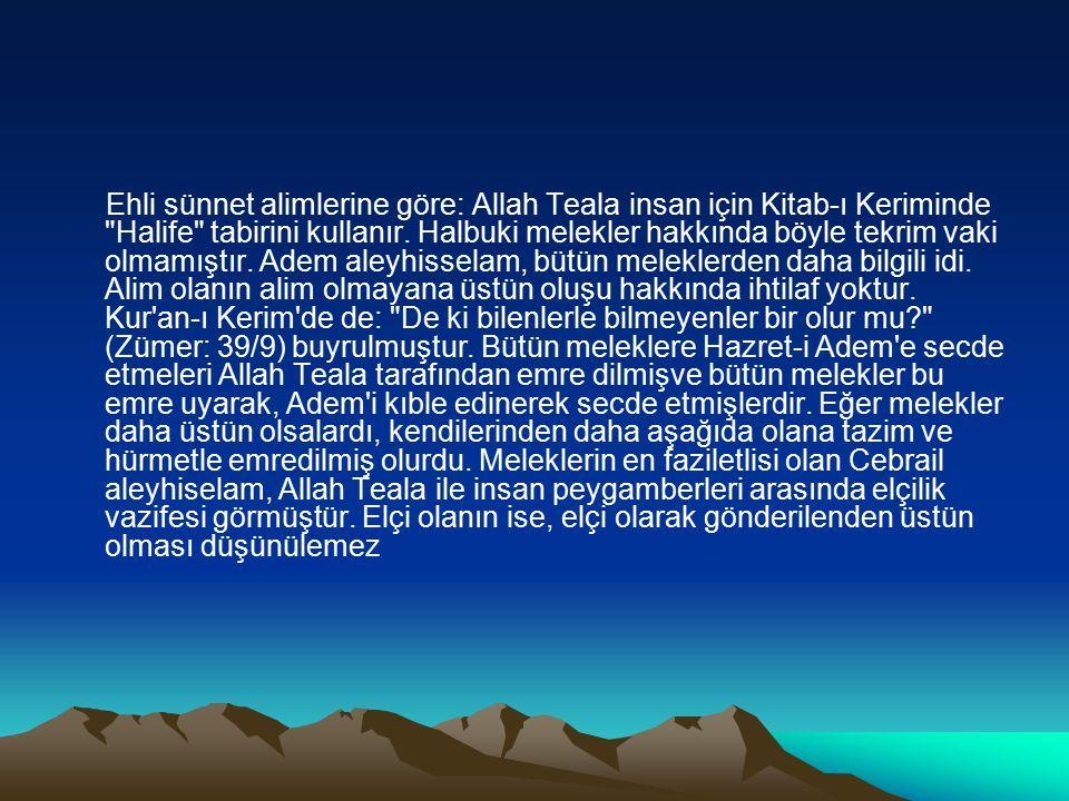 Ehli sünnet alimlerine göre: Allah Teala insan için Kitab-ı Keriminde