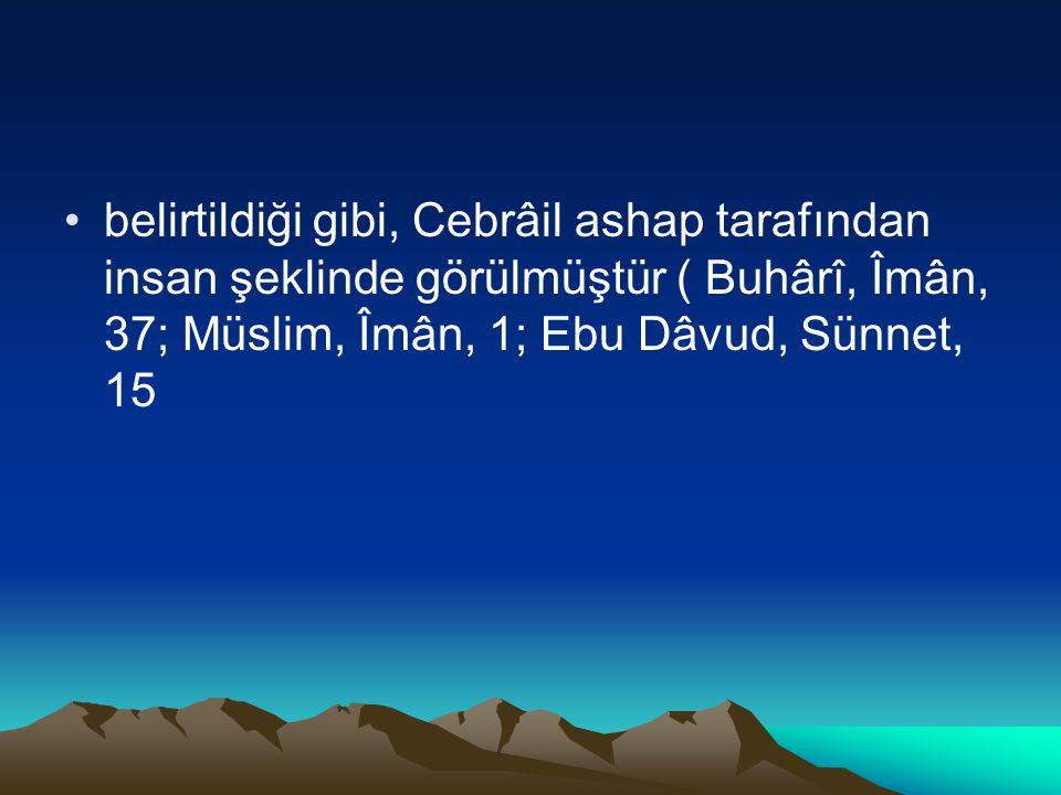 belirtildiği gibi, Cebrâil ashap tarafından insan şeklinde görülmüştür ( Buhârî, Îmân, 37; Müslim, Îmân, 1; Ebu Dâvud, Sünnet, 15